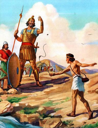 david bible photo